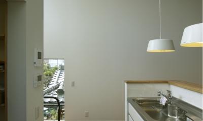南足柄S邸-南面採光と北側眺望を得るためのスキップフロア- (南足柄S邸03)