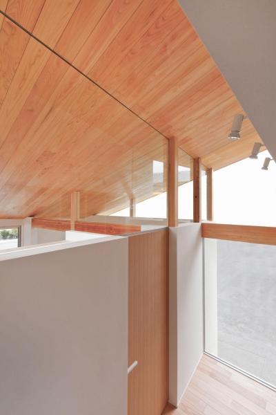 天井 (狭小地/変形地/高低差のある土地で光を取り入れるガラスのスリットのある家(山科の家))