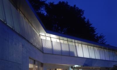 中軽井沢、地窓から裏手の広大な森が目に入る緑に囲まれた住まい (夜景)