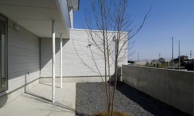 鴻巣の家 (庭にあるシンボルツリー)