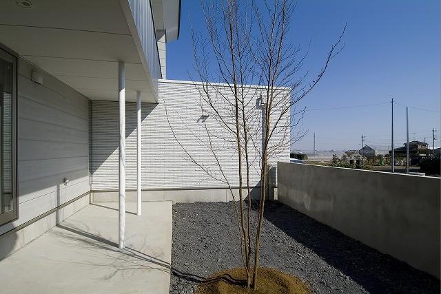 鴻巣の家の写真 庭にあるシンボルツリー