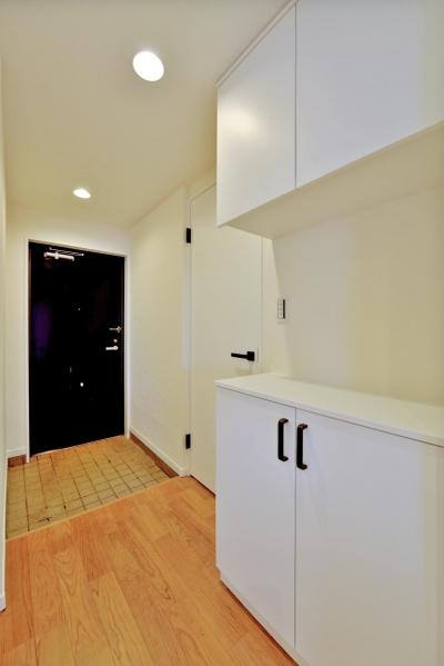玄関 (2室→1室の広々1LDKリノベーションでワイドキッチンを中心にする暮らし)