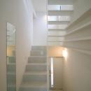 スキップの家 / 愛犬家住宅の写真 真っ白な曲階段