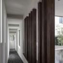 スロープの家 / 愛犬家住宅の写真 天井と壁で変化をつけたスロープ