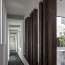 スロープの家 / 愛犬家住宅 (天井と壁で変化をつけたスロープ)