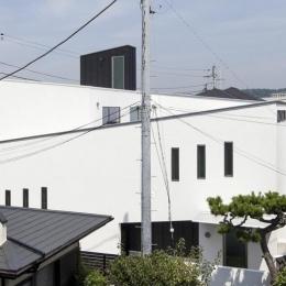 スロープの家 / 愛犬家住宅 (スロープの構成を表現した外観)