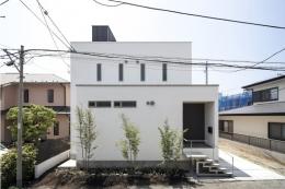 スロープの家 / 愛犬家住宅 (玄関側外観)