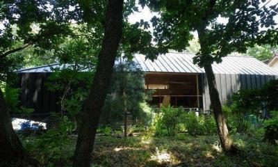 レイヤード 森にうかぶ小屋