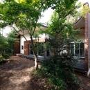 木漏れ日屋根の家の写真 雑木林に融合する外観