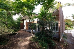 木漏れ日屋根の家 (雑木林に融合する外観)