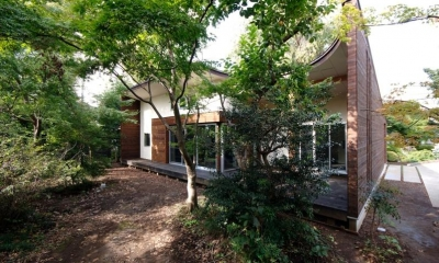 木漏れ日屋根の家