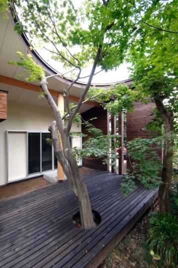 木漏れ日屋根の家の部屋 ウッドデッキテラスにあるシンボルツリー