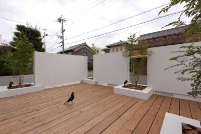 ウッドデッキ (9平米の増築と外構でつながる広がりのある家(城東の家リノベーション))