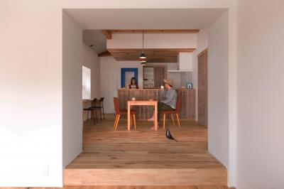 9平米の増築と外構でつながる広がりのある家(城東の家リノベーション) (ダイニング)