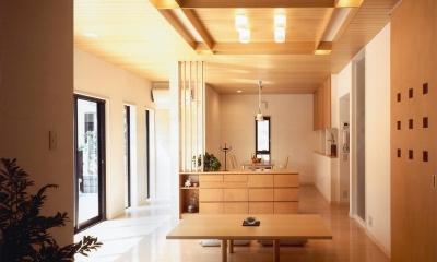 木造のスケルトンリフォーム|HT-house (アウタールームからのリビング・ダイニング)