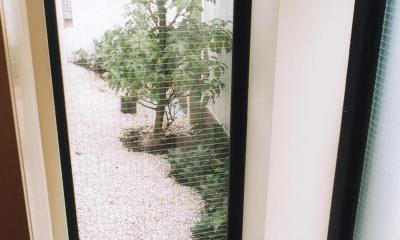 木造のスケルトンリフォーム|HT-house (玄関カウンターの足元に設けた窓。)