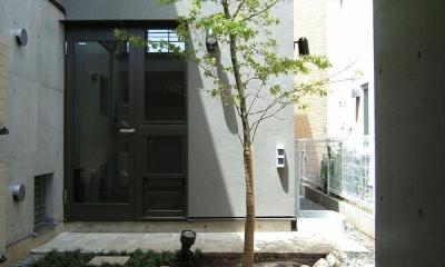 地下1階地上3階の混構造 バス通りの家 (中庭)