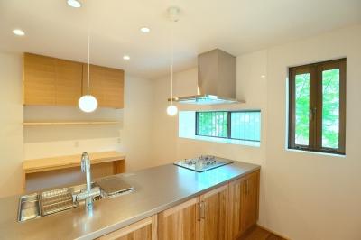 キッチン (HOUSE F)
