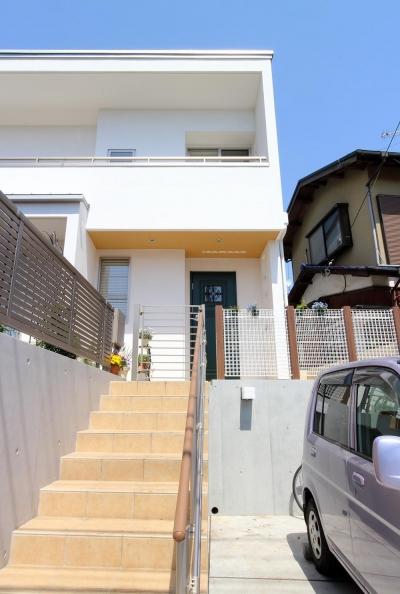 水平フラットな外観でまとめた木造|東久留米の家 (玄関ポーチに至る階段)