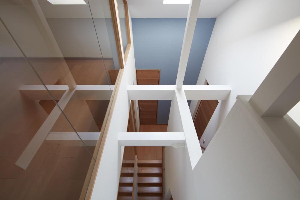 小岩の二世帯住宅 (既存トップライトを生かした階段室(子世帯))