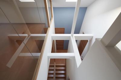 既存トップライトを生かした階段室(子世帯) (小岩の二世帯住宅)