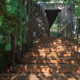 装迎遊居 sougeiyukyo (壁面緑化のアプローチ)