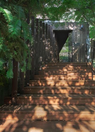 壁面緑化のアプローチ (装迎遊居 sougeiyukyo)