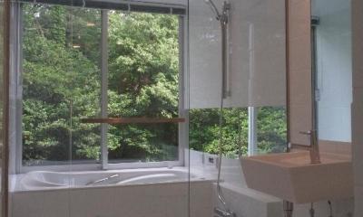 橋の住宅 (ガラス張りのバスルーム)