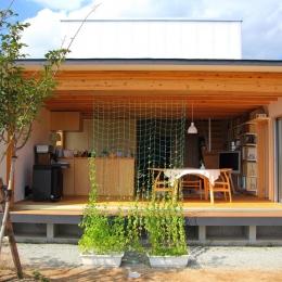 白鷹の家 (雪国に対応する開放的な外観)