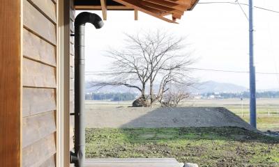 西根の家 (ソメイヨシノの大木が見える縁側)
