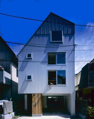 伊丹市の家 (外観)