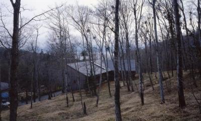 森の中の静かな別荘