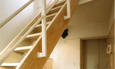 共同住宅形式とした2世帯住宅 (階段は建て主の希望で木製にしています。)