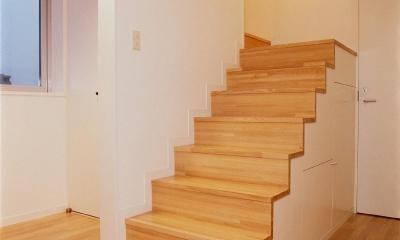 スタジオ鳥村ビル (内部の上りやすい階段です。)