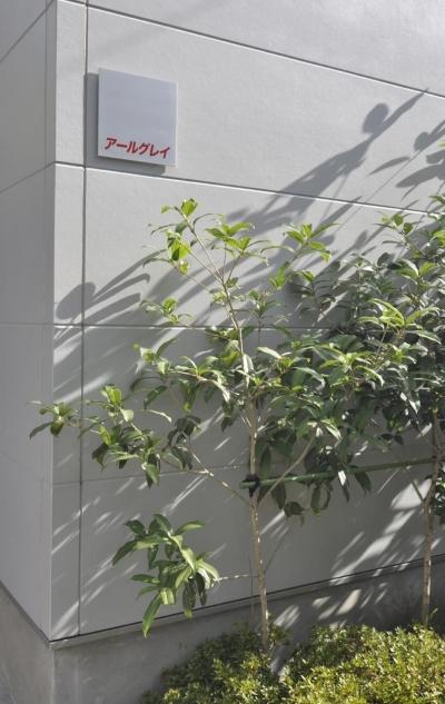 荻窪テラスハウス・アールグレイ (正方形の表札)