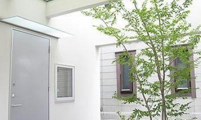 中庭のある狭小住宅