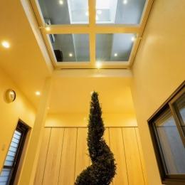 玄関ホールの坪庭に明るい光が降り注ぐ開放的な住まい (坪庭)