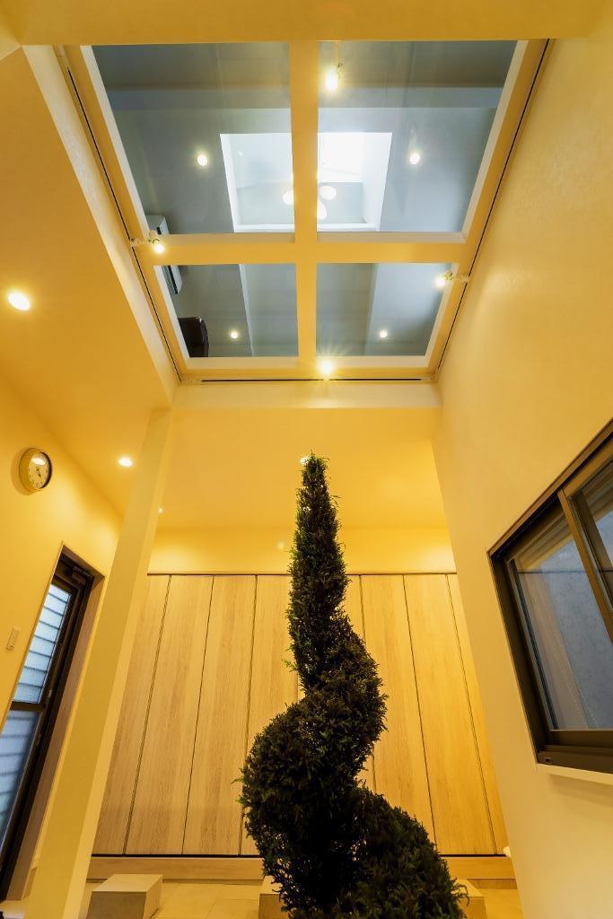 玄関ホールの坪庭に明るい光が降り注ぐ開放的な住まいの部屋 坪庭