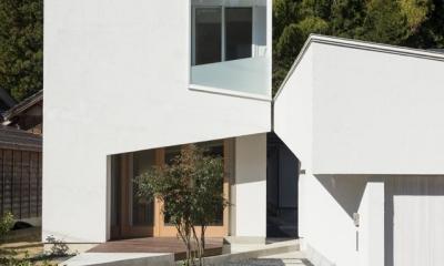 刈羽村の家 (白の外観)