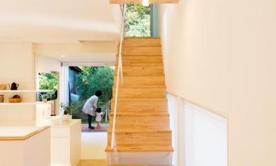 刈羽村の家 (階段室の奥に森をみる)