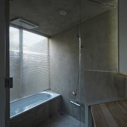 茅ヶ崎の家 (茅ヶ崎の家 浴室)