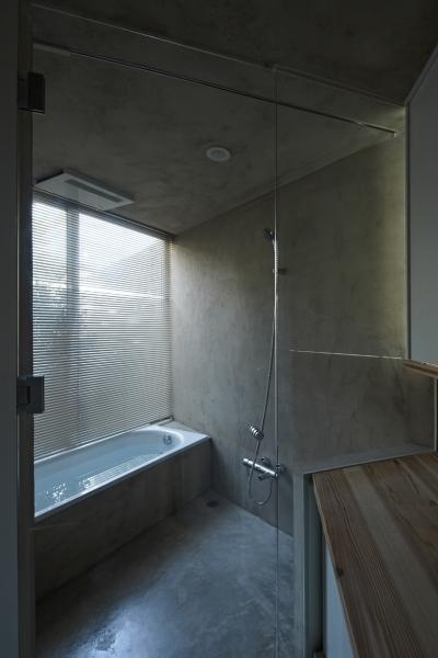 茅ヶ崎の家 浴室 (茅ヶ崎の家)