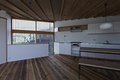 茅ヶ崎の家 (茅ヶ崎の家 キッチン)