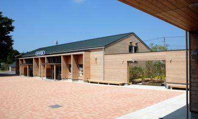 この建物も通常では鉄骨がふさわしいと考えるような建物なのですが、木造中断面によるSE 構法を採用しました。|マザー牧場・まきば売店
