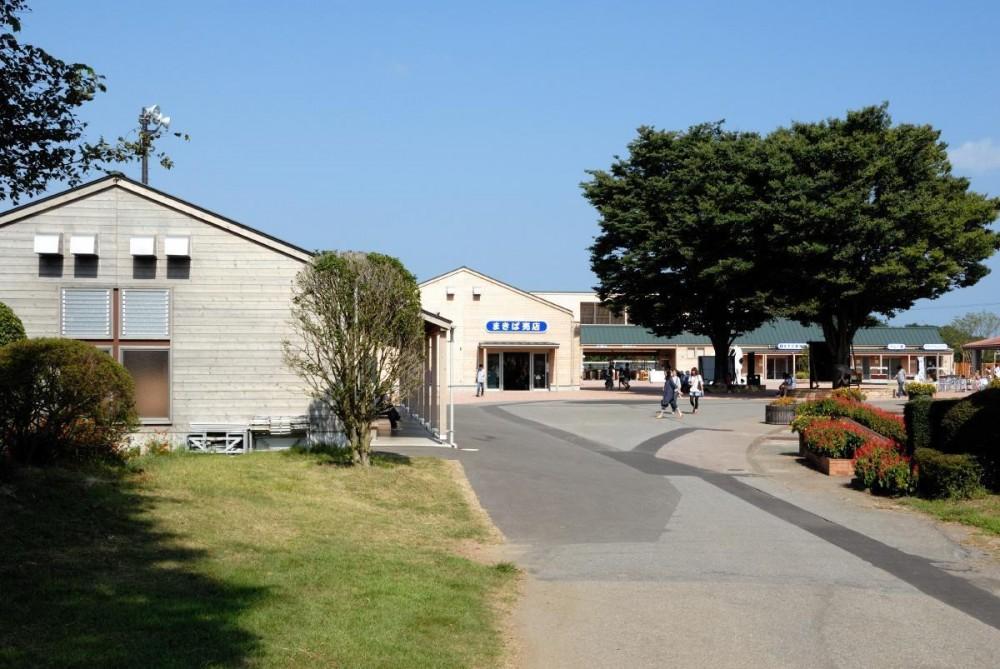 マザー牧場・まきば売店 (奥に見えるのがゲート建物です。)