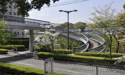 鶴牧西公園歩道橋 (土木学会デザイン賞 2014 優秀賞受賞しました)
