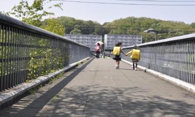 鶴牧西公園歩道橋 (高欄2)