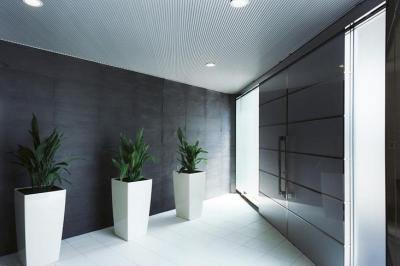 上足洗の家 (光が差し込むエントランス)