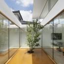 TNdesign一級建築士事務所の住宅事例「SI-house_薄い屋根と水盤と一体になる家」