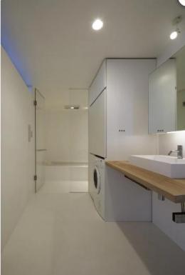SI-house_薄い屋根と水盤と一体になる家 (Lavatory)
